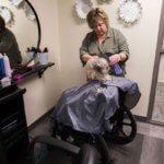 Elderly women in wheelchair getting a haircut